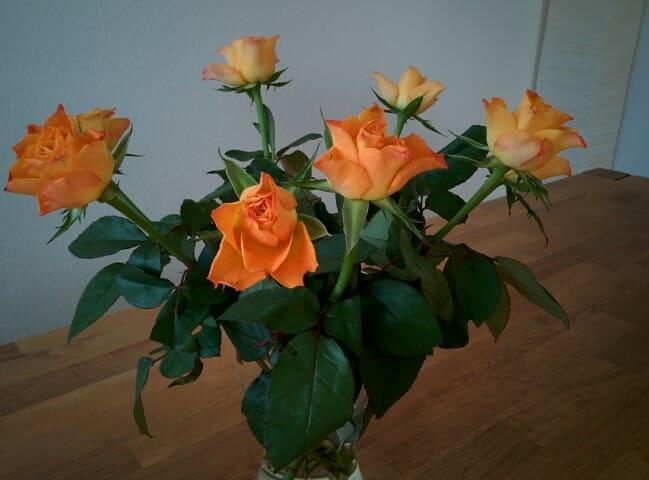 Rosenspalier beim Auszug aus der Kirche 1